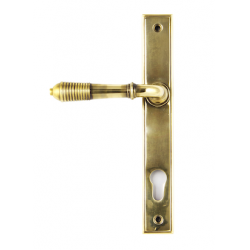 Slimline Reeded Sprung Level Espag - Aged Brass